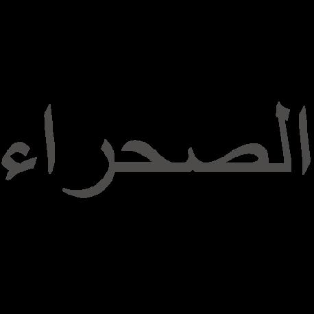 AMICI DEL SAHARA