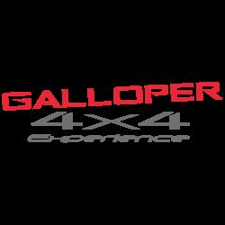 GALLOPER 4X4 ESPERIENCE